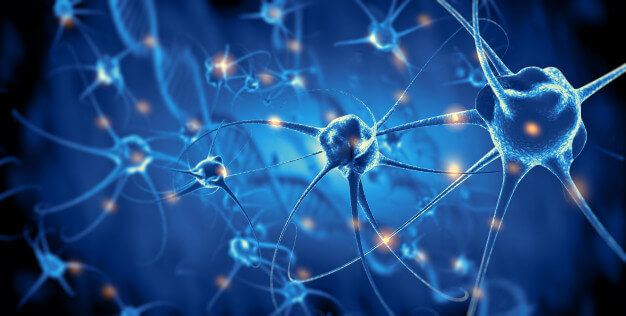 Movement to Test Your Nervous System Health